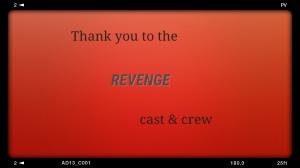 Goodbye Revenge